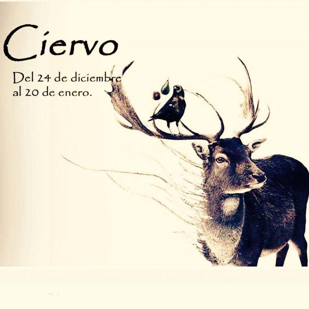 Horóscopo Celta ciervo
