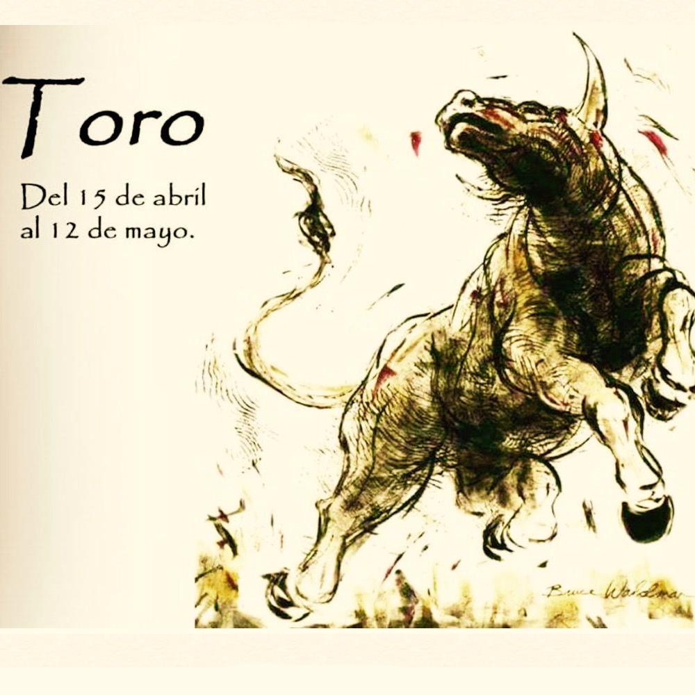 Horóscopo Celta toro