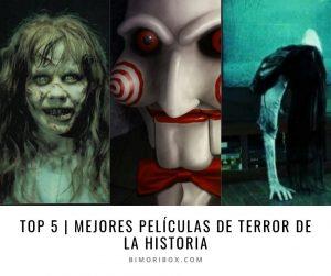 Top 5 imagen