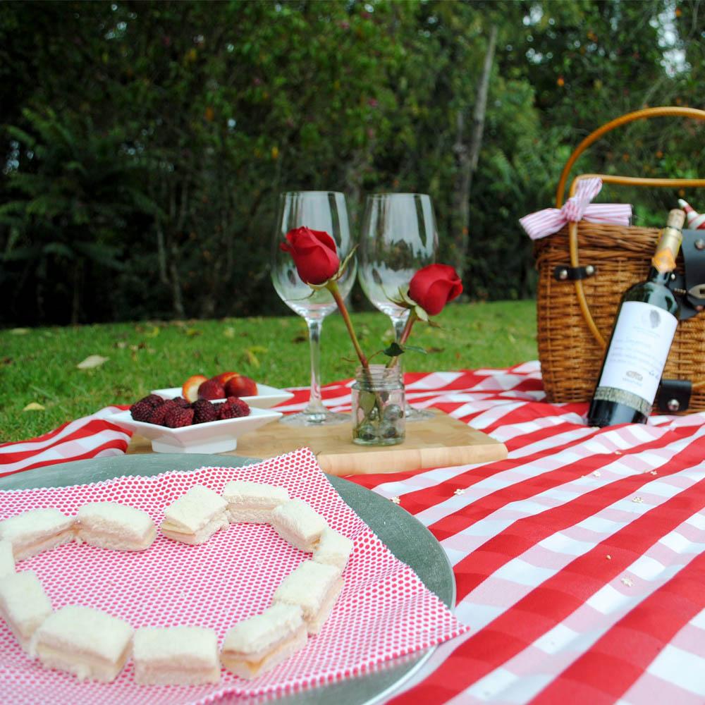 regalos para el 14 de febrero picnic